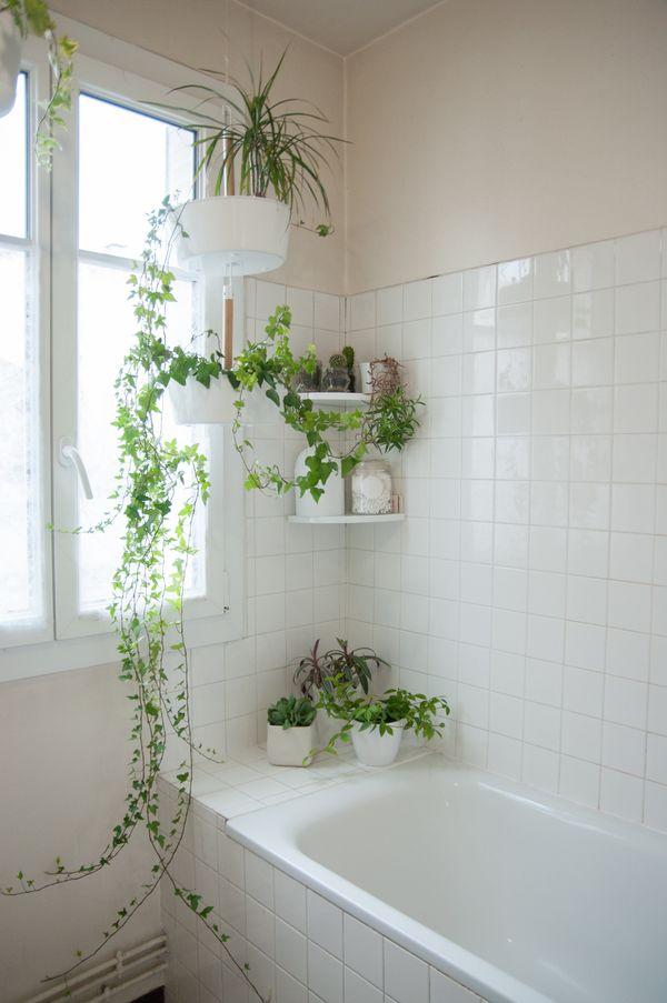 thiết kế toilet đẹp